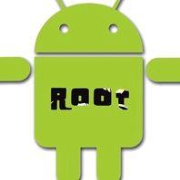 Получаем root Torex PAD2